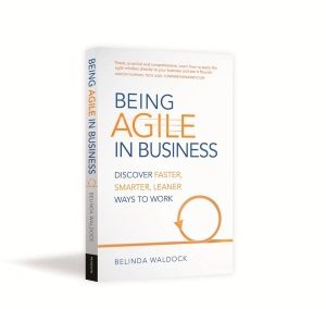 being agile in business book